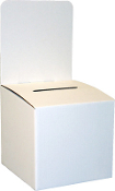 "10""wide Ballot Box"